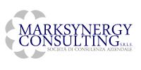 logo_marksynergy